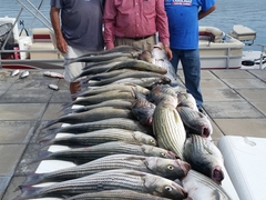 Group with fish all-day fishing guide Little River Guide Service Clarks Hill Lake GA Lake Strom Thurmond SC